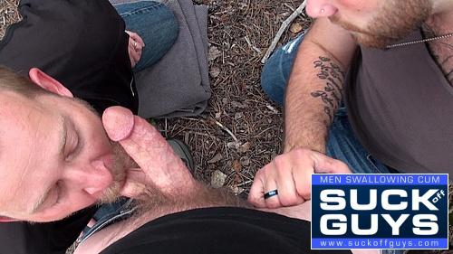 POV Gay Suckoff and Cum Swallowing